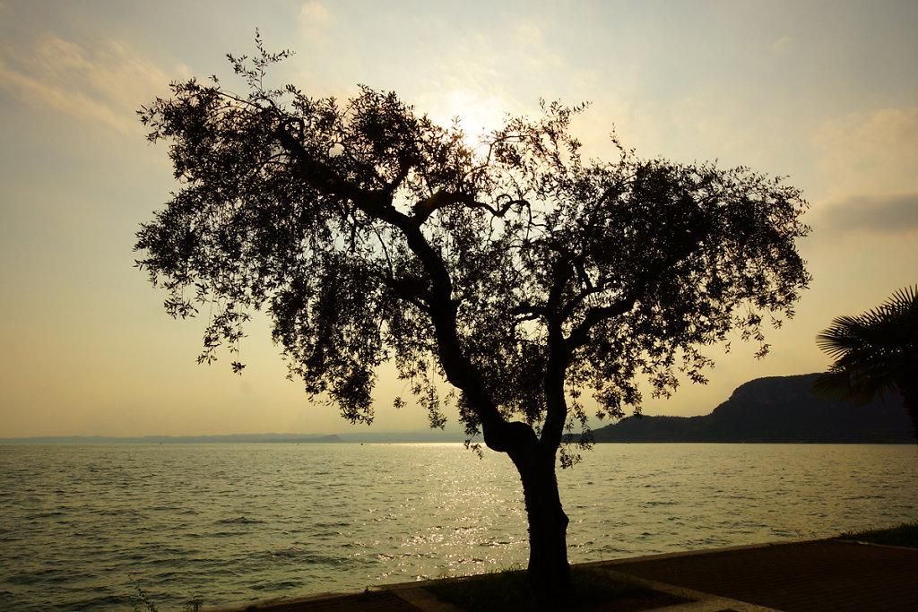 Gardasee 27